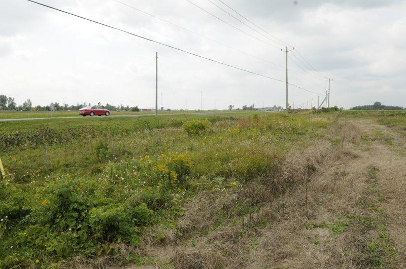 Les terrains du Groupe Lobato pourraient obtenir un changement de zonage d'ici le printemps prochain afin de permettre la mixité commerciale.