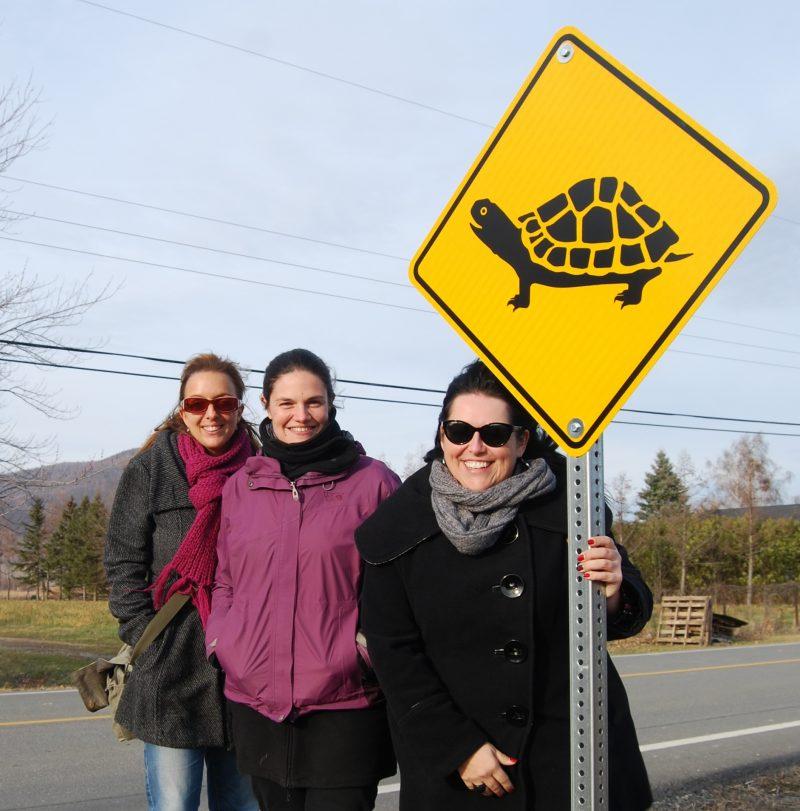 Un des deux panneaux routier pour la traverse de tortues.