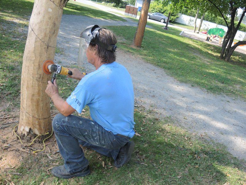Le sculpteur a commencé son projet la semaine dernière.