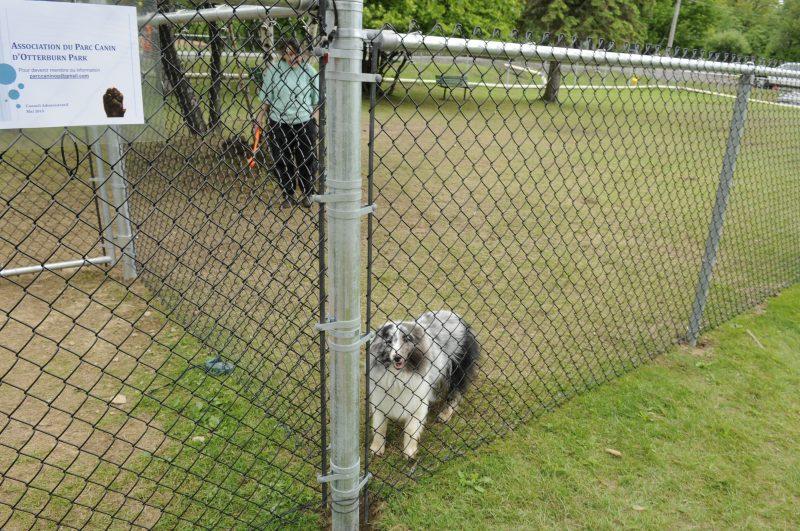 Le parc canin d'Otterburn Park devant les tribunaux