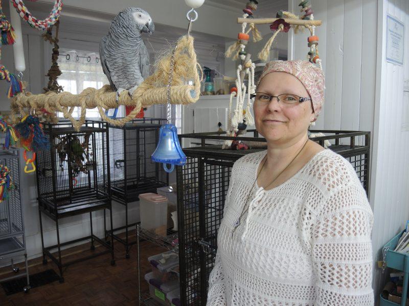 L'Œil Régional avait rencontré Ghyslaine Piette chez elle au début du mois de mai. Toutefois, le journal n'avait publié aucun article à la suite de son entrevue, préférant vérifier certaines informations.