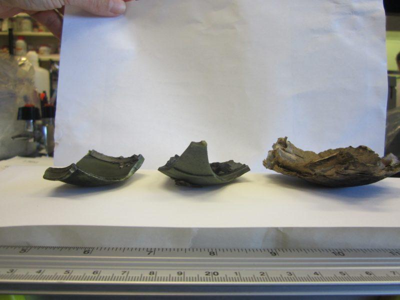 Hélène Richard a conservé des morceaux de plastique provenant des feux d'artifice de la fête nationale.