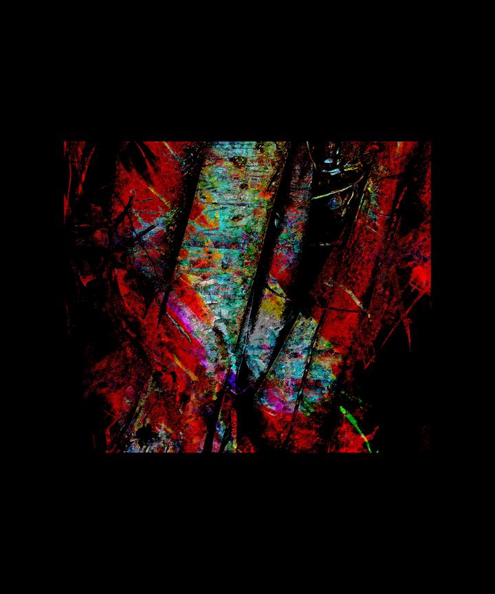 Le chant des arbres sous-marins de Danielle Vary