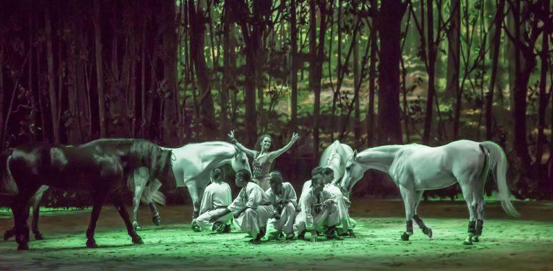 Le rideau recréant une forêt est la fierté d'Acmé. photo: Vanessa-Kay