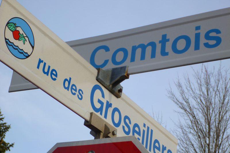 Des travaux sont prévus sur les rues Comtois, des Œillets et des Groseillers. Photothèque | L'Oeil Régional ©