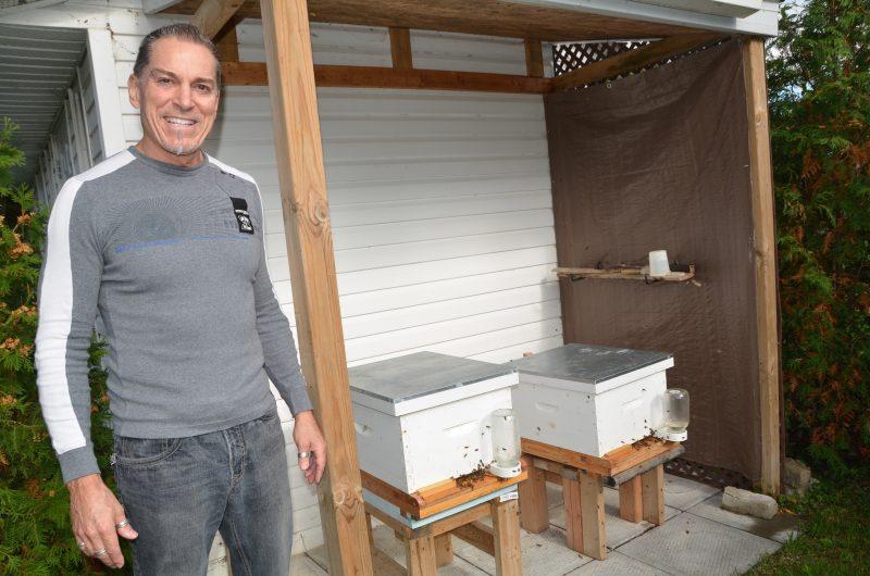 Claude Tellier, en octobre dernier, a appris que son rucher n'était pas permis par la Ville de Belœil. Photothèque | L'Œil Régional ©
