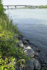 Déversement de pétrole dans la rivière Richelieu