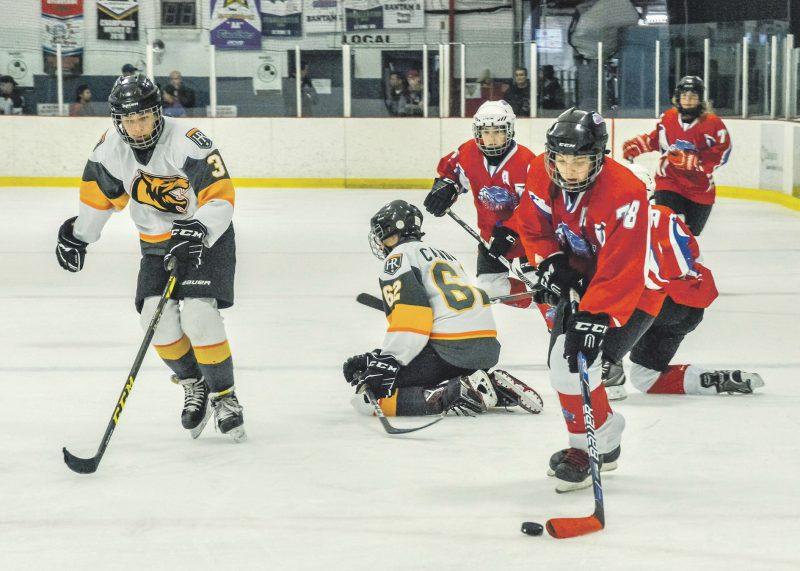 Le hockey mineur  a été un des nombreux sports à être affecté par la pandémie. Photothèque   L'Œil Régional ©